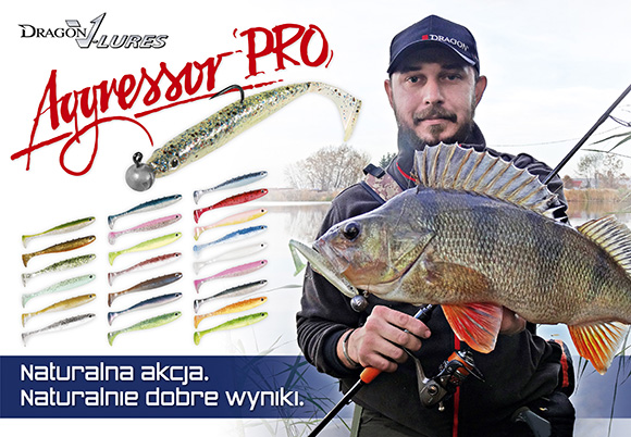 Agressor PRO Dragon Fishing Design